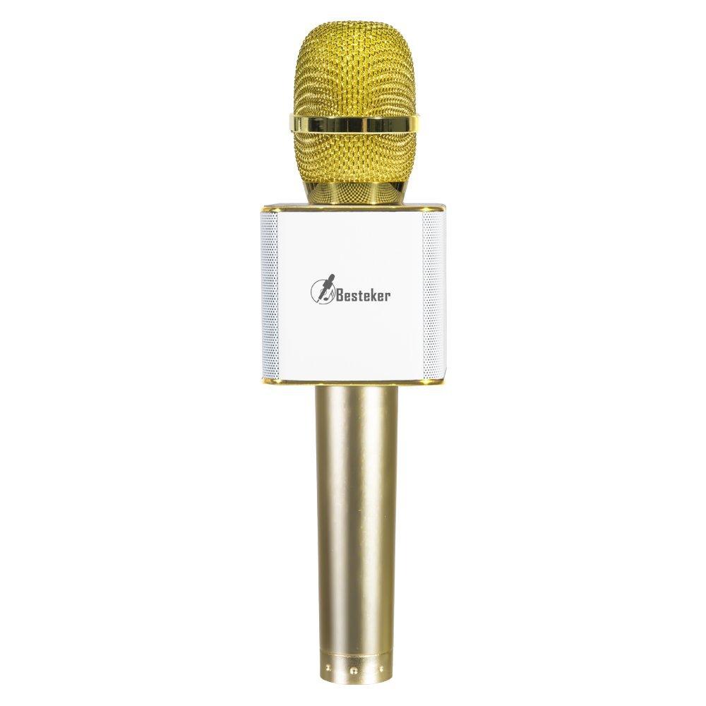 Besteker Microphone